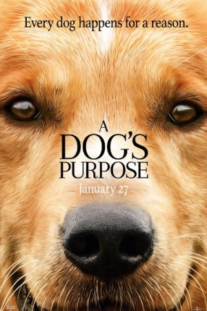 Watch A Dog's Purpose Online