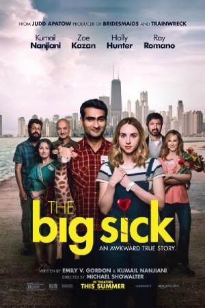 Watch The Big Sick Online
