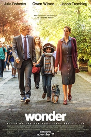 Watch Wonder Online