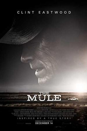 Watch The Mule Online