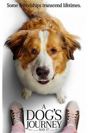 Watch A Dog's Journey Online