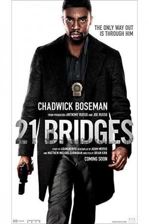 Watch 21 Bridges Online
