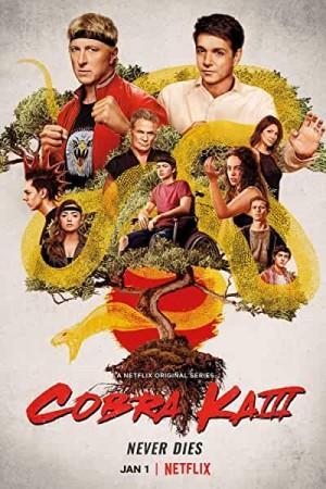 Watch Cobra Kai Season 3 Online